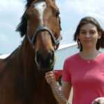 Healing for the Heart of a Horse