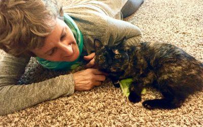 Cat Adoption as Spiritual Growth