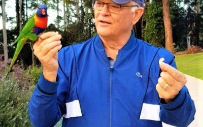 Australia's Wild Birds—Messengers of Love and Trust